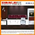 Best PRICE uv kitchen cabinet